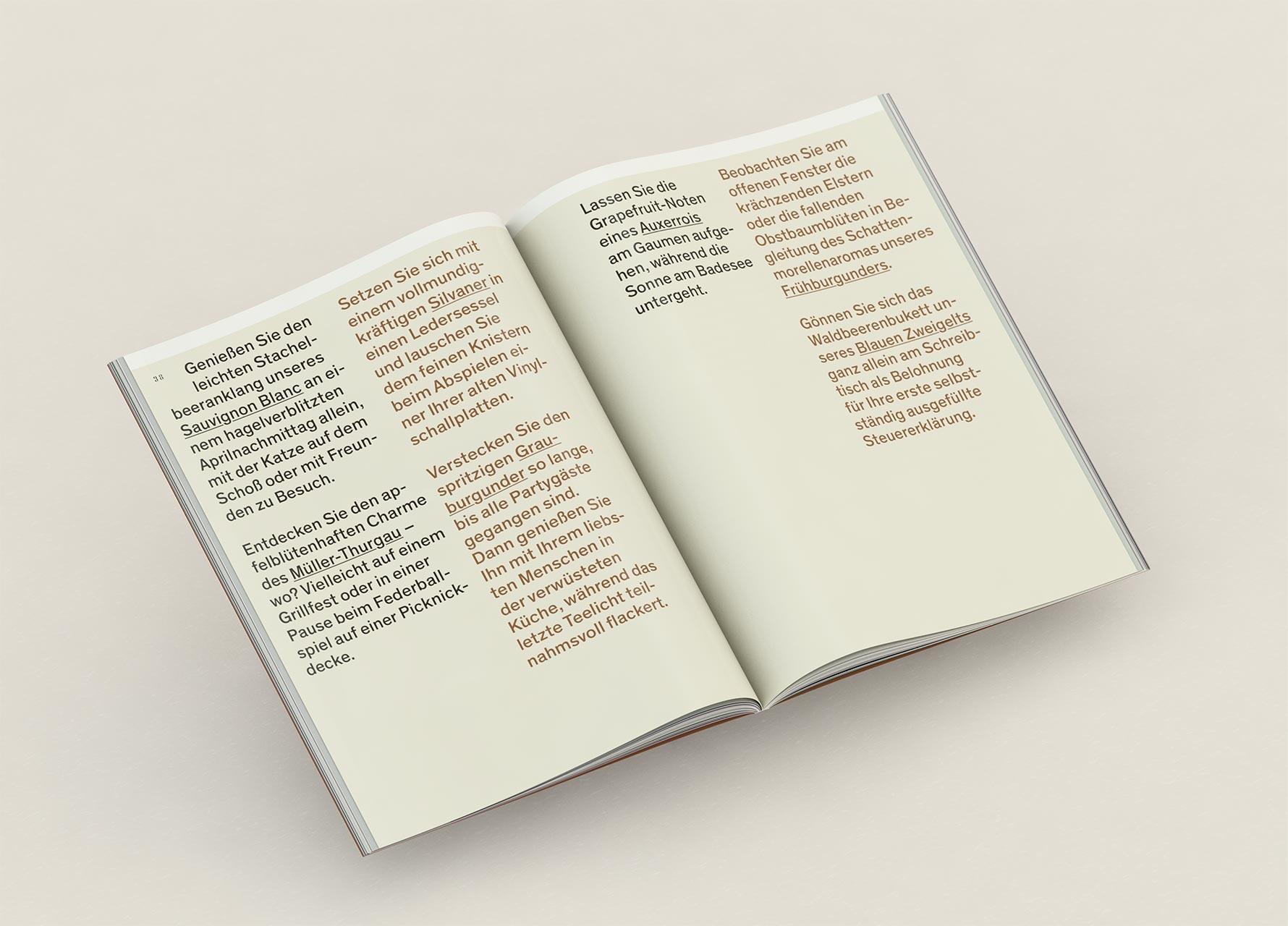 Beste Flackern Buch Vorlage Bilder - Beispiel Wiederaufnahme ...